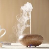Fragrance spa vapor DIFFUSER / china market of electronic
