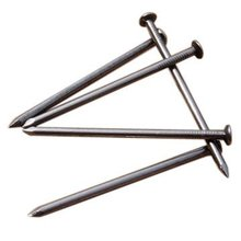 Common Nails / Steel Nails / Round Nails / Wire Nails