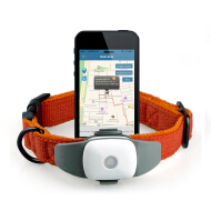 worlds smallest gps tracking device with mobile phone tracking software, with real-time tracking from APP