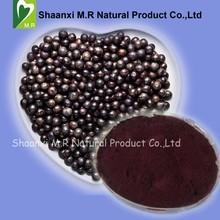 Natural Anti Oxidant Acai Berry Extract Powder 4:1 / 10:1