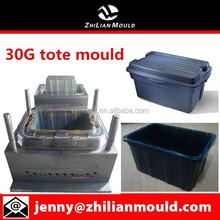 30 gallon tote mould for storage