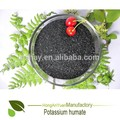 feno pingxinag leonardita fontes pura de ácido húmico alimentos ricos em potássio lista