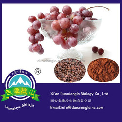 Factory supply grape seed extract, grape seed extract powder proanthocyanidins 95% with best price