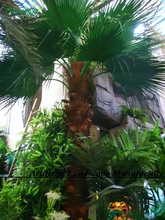 18M tall fake palm tree popular artificial palm tree factory direct,Hot selling cheap artificial palmtree