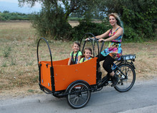 High Quality Hot Sale Pedal Car Adult three wheel bicycle/cargo tricycle