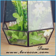 plant holder decorative artifical galss terrarium for home decor wholesale