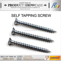 galvanized self tapping screw from china manufacturer for sale