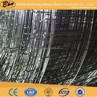 """SS304 Welded Wire Mesh/ 3/4"""" Galvanized Welded Wire Mesh"""