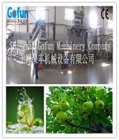 apple/buleberry/mango/peach juice processing plant