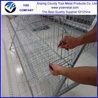 china manufacturer design hens cage/types chicken cage/chicken breeding equipment
