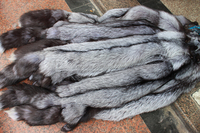 Wholepiece Real FOX fur skin stole of natural fur Natural Color animal Fur