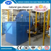 Heating Boiler 5 MW boiler gas power plant in pakistan
