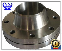 Ring Joint RF WN Flange