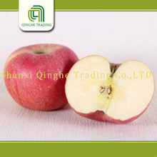 new crop 2011 new crop fresh red fuji apple apples whole sale