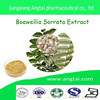 High Quality Boewellia Sorrata Extract with best price