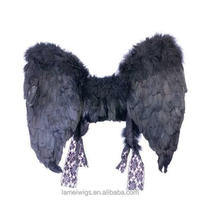 fairy wings with animal feather