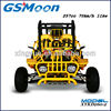 250cc water cooling EEC/EPA sand beach buggy