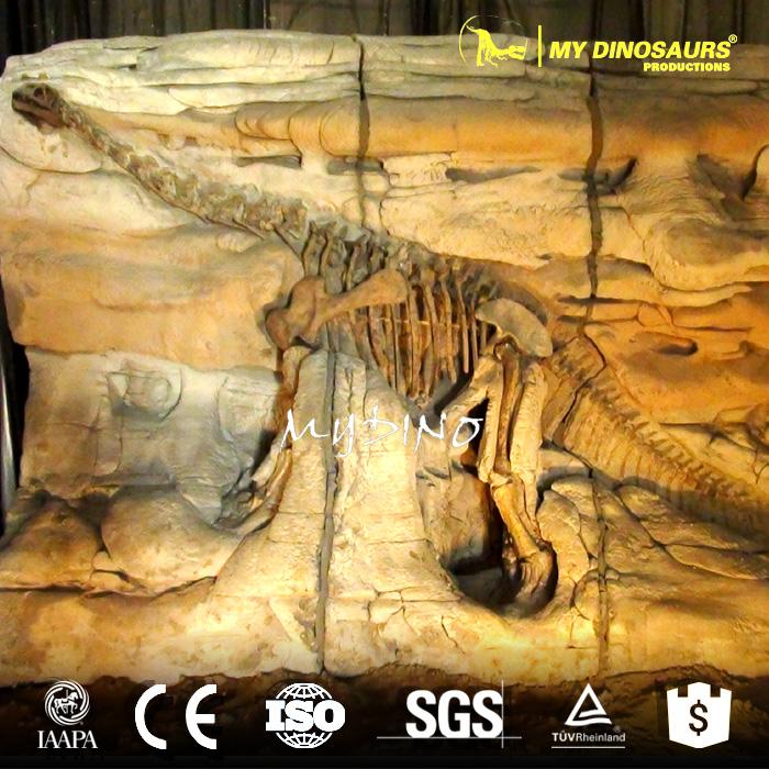 dino fossil wall2.jpg