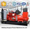 High performance Cummins engine powered diesel generator automatic voltage regular