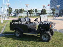 Electric 4 Seats UTV