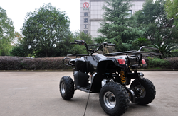 CE approved new quad for sale