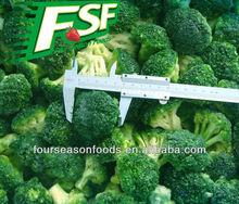 Bulk iqf/ frozen broccoli, broccoli floret 2-4/3-5cm ,chinese frozen vegetables