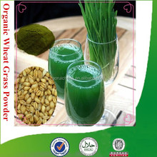 100% Natural & organic wheat grass powder with high quality, factory supply wheat grass powder