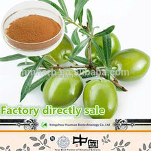China factory wholesale 100% pure and organic herbal extract olive extract powder