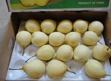 2015 sfuso cinese Golden pera frutta fresca/cachi freschi frutti per la vendita