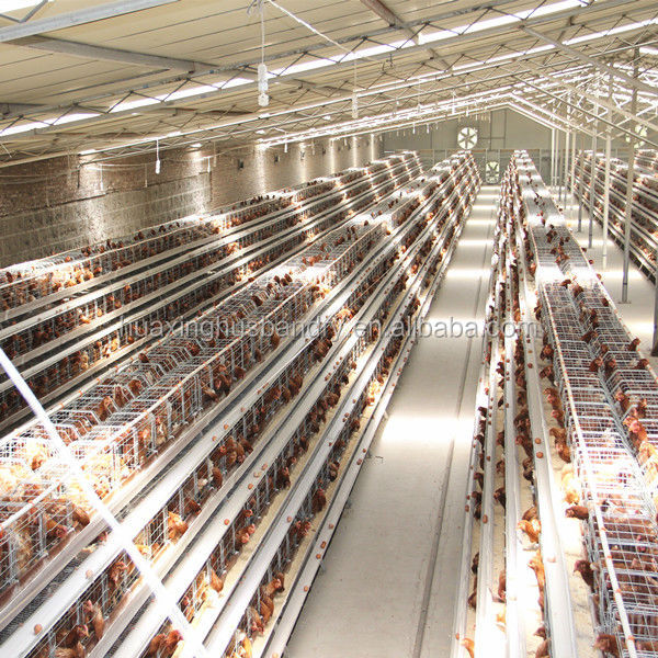 Poultry House For Sale Sale Poultry House/chicken