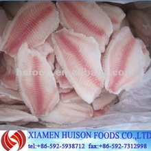 Frozen Tilapia Fillet Fish