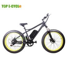 "EN15194 certificated fashional 26""*4.0 fat tire e bike for sale"