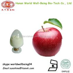 wholesale prices apple fruit extract powder/ apple pectin