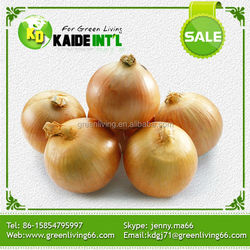 Wholesale fresh shallot onion(good quality and competitive price)