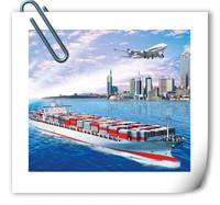 China shipping agent container homes Sea freight to Celle Germany from China with lowest shipping cost - Skype :boingrita
