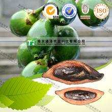 Raw material herbal medicine betel nut