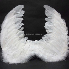 Party angle feather wing