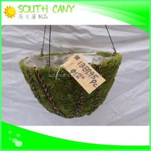 Half round handicraft green moss fashion chinese flower pots