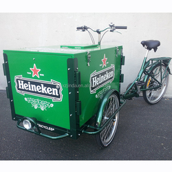 electric tricycle cargo for family
