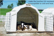 Calf Hutches with Roof/Made in China Calf Hutches, Calf house, calf cages/China Supplier New Products Calf Hutch