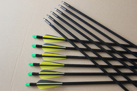PA-0533 Hot sale fiberglass arrow for recurve bow and arrow for hunting with 3 plastic vane