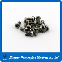 Precision mini small 0.6mm 1.5mm diameter fixing screw