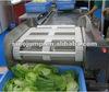 Complete function Fruit Processing line, industrial fruit processing line, hot sell fruit processing line