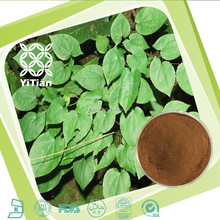 Natural Herbal Product Icariin 5~98% from Epimedium Extract
