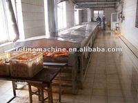 vegetable and fruit sterilization machine