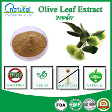 100% Pure Olive Leaf Extract Powder