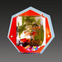 JA-YG-027 acrylic stylish fish bowl plastic fish bowl for home/office decoration