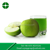 Chinese juice fresh green apple exporter