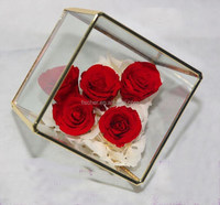 Tyrant gold valentine gift wedding gift for Valentine's Day flowers and glass greenhouse succulent flower containers.