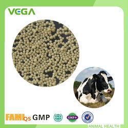 Powder Bacillus Subtilis Probiotic Supplement For Diary Cow